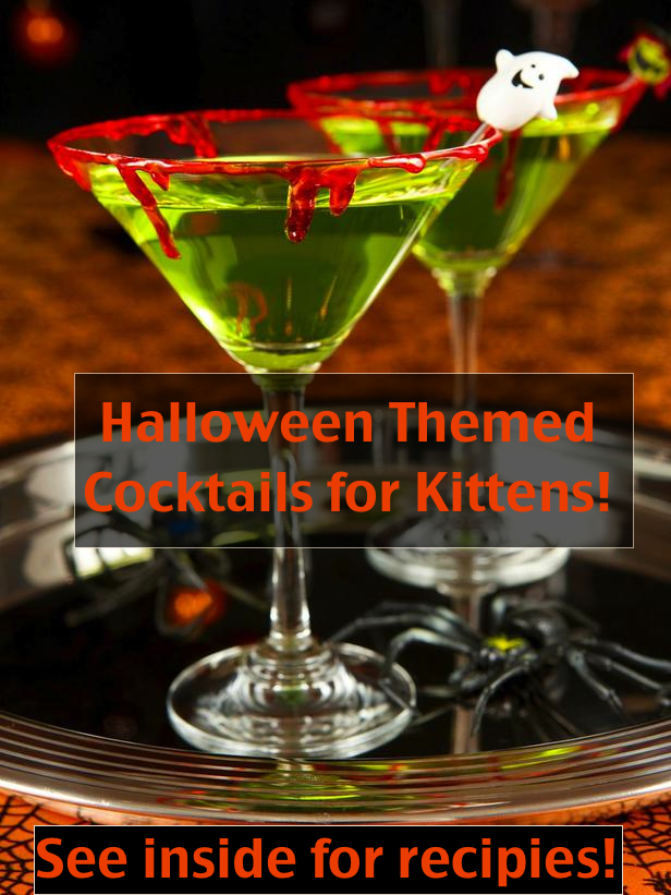 Halloween themed cocktails for kittens! post thumbnail
