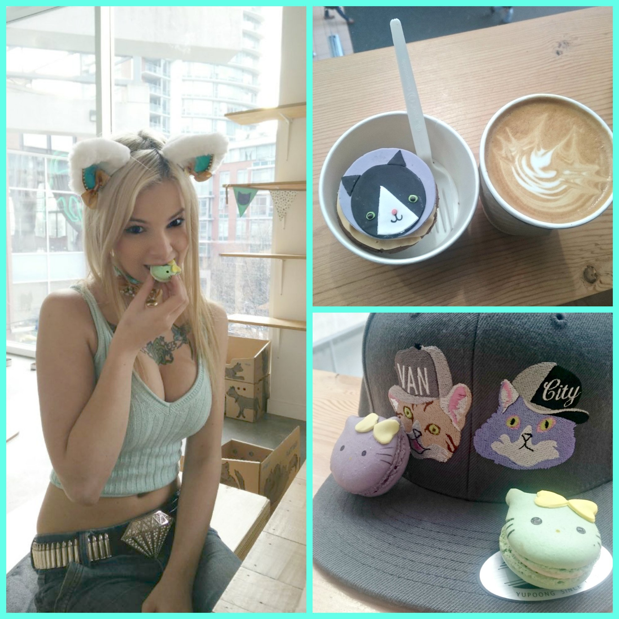 A visit to Catfe Vancouver's Cat Cafe! post thumbnail