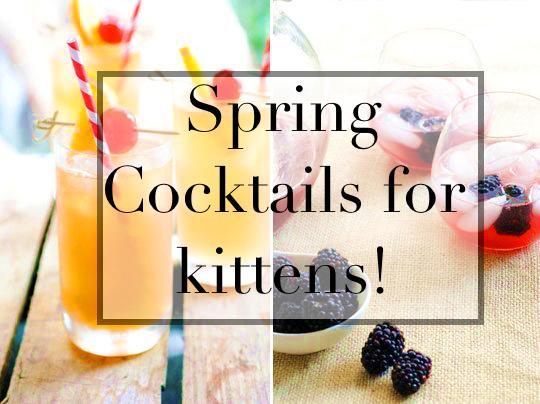 Spring cocktails for kittens! Lillet Rose. post thumbnail