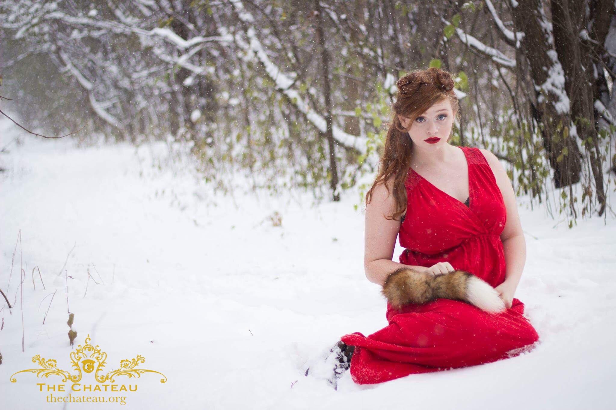 Snow Fox post thumbnail
